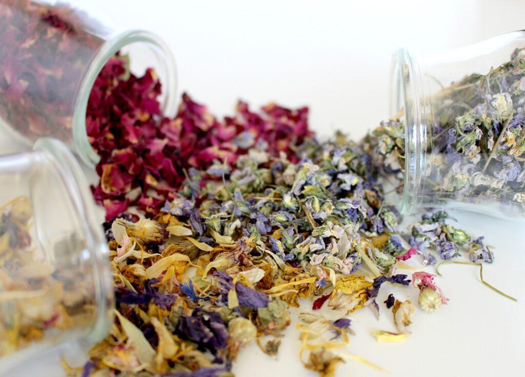 Vasitos con plantas secas medicinales